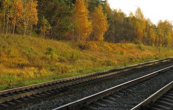 Сочинение по стихотворению Железная дорога Некрасова 6 класс