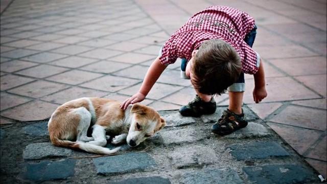 Сочинение Великодушие и доброта