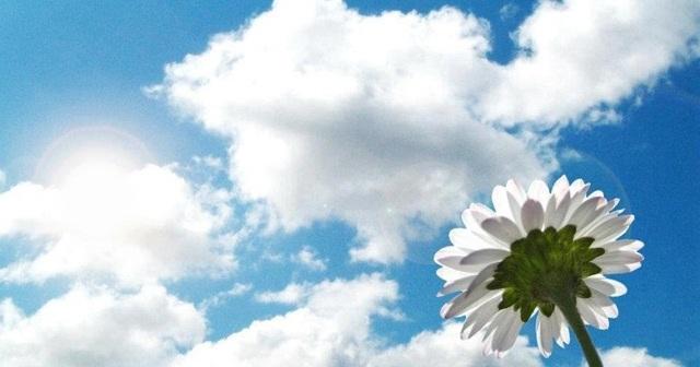 Сочинение Расставание, как часть жизни