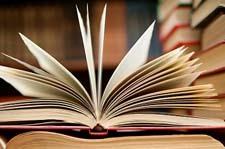 Роль литературы в жизни человека - сочинение 11 класс