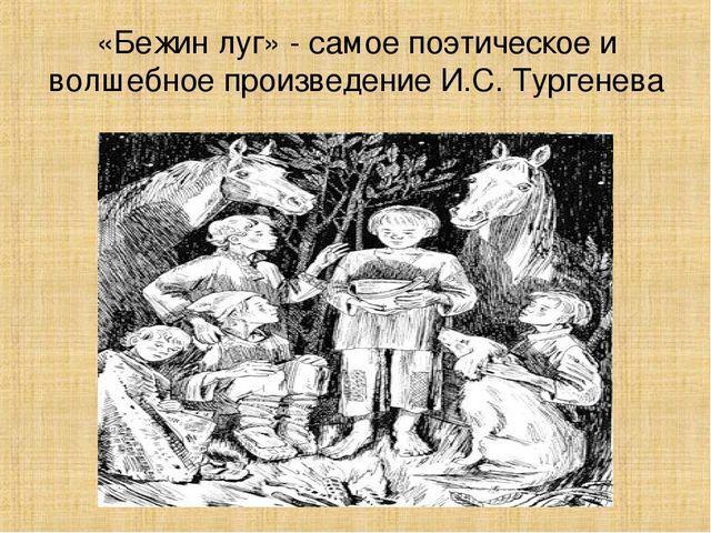 Рассказы мальчиков (Истории мальчиков из рассказа Бежин луг)