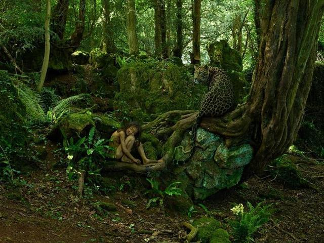 Сочинение про рассказ Маугли