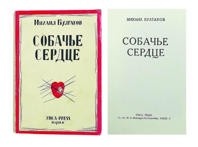 Сочинение Доктор Борменталь в рассказе Собачье сердце (9 класс)