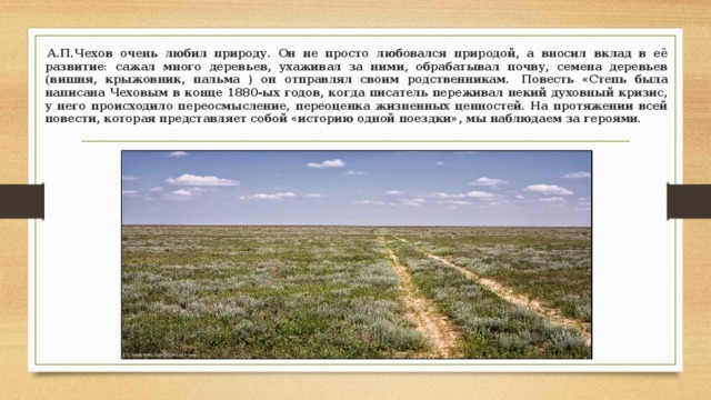 Сочинение Описание степи в повести «Тарас Бульба» 7 класс