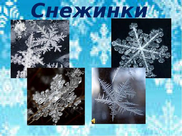 Сочинение О чем шепчутся снежинки